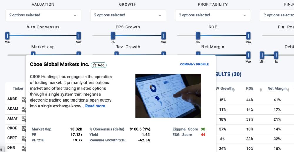 stock company profile